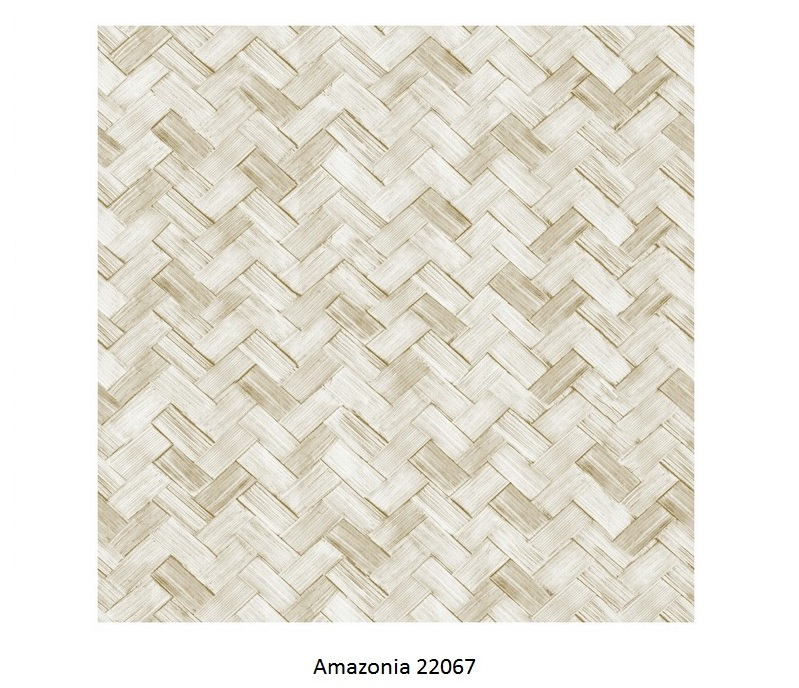 Papel de Parede Amazonia 22067