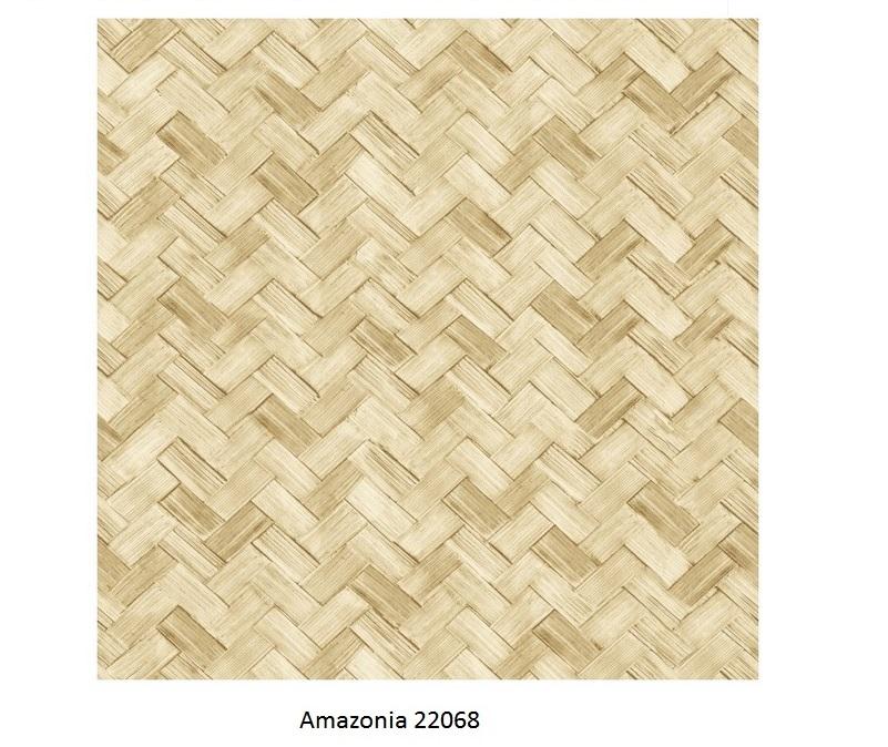 Papel de Parede Amazonia 22068