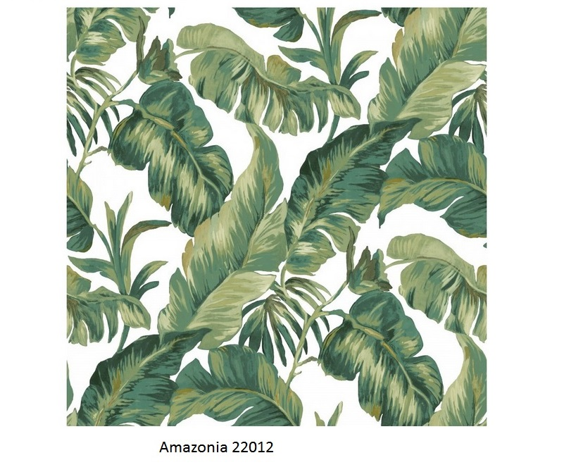 Papel de Parede Amazonia 22012